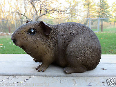 GUINEA PIG FIGURINE 8.5 IN.X 4.5IN animal resin box fake straw PET BROWN STATUE