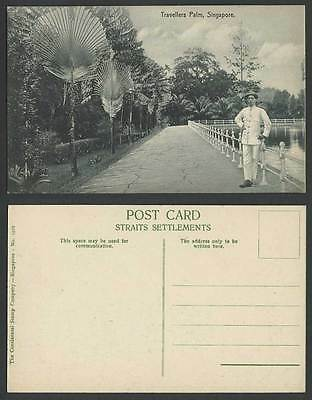 Singapore Old Postcard Traveller's Travellers Palm Trees, Man Stand by Reservoir