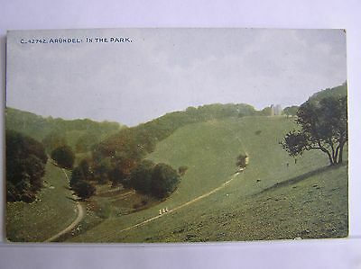 POSTCARD - ARUNDEL - IN THE PARK - SUSSEX - c.1912