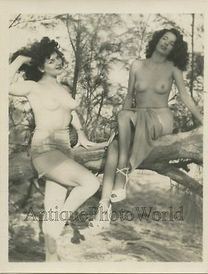 Two gorgeous nude women posing on tree branch vintage pin up photo