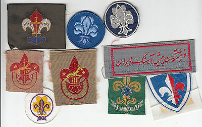 Boy Scout Membership Badge Collection (246)