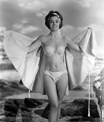 ANNE HEYWOOD (VIOLET PRETTY)(The Fox etc) lovely actress signed page & PC bikini