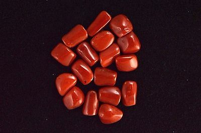 Natural Red Coral Lot Cab Cabochons