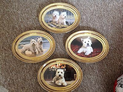 Franklin Mint West Highland White Terrier Plates By Nigel Hemming