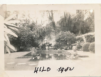 WWII 1942 Schofield soldiers at Hilo, fountain Hawaii  Photo