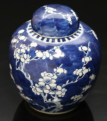 Antique Chinese Blue & White Porcelain Ginger Jar Asian Bulbous Prunus Blossom