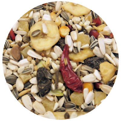 Tropical Deluxe Complete Macaw Parrot Mix Bird Food Parakeet Seed African Grey