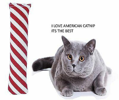 Cosmic Catnip Candy Cane Cat Kitten Play Toy With American Strong Catnip 12172