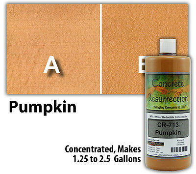 Professional Easy to Apply Water Based Concrete Stain - Pumpkin
