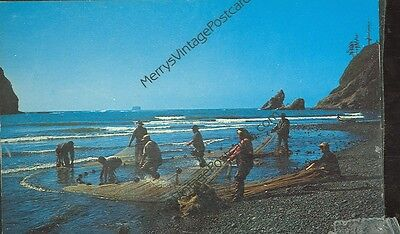 Pacific Ocean Seacoast-Indian Smelt Fishing-(Indian-322)