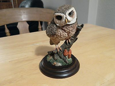 Collectable Country Artists ornament Little Owl on branch