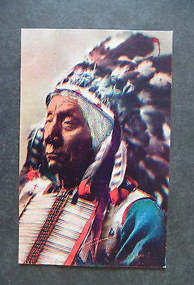 1900s Indian Chief Red Cloud Postcard