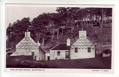 The Stags Heads Berriedale Caithness J Adams Real Photograph Old Postcard RP