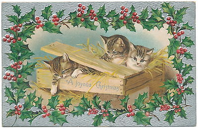 Christmas Cats Escaping Crate - Holly Border