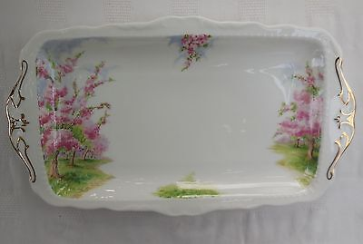 Vintage 1st Quality Royal Albert Bone China Blossom Time Sandwich Tray Plate