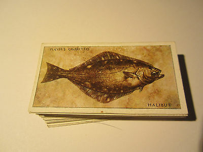 "PLAYER'S "" SEA FISHES"" 1935 FULL SET [s]"