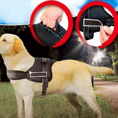 Comfortable Large Pet Dog Adjustable Walking Outdoor Harness Chest Strip Collar