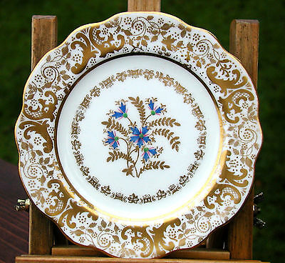 Antique Spode Copeland Plate Colourful Hand Painted Design  Stamped For Tg Goode