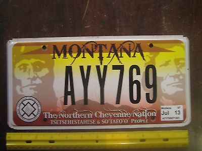License Plate, Montana, Northern Cheyenne Nation, Gr8 Seal of the Tribe, AYY 769