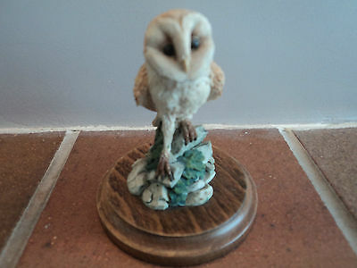 Vintage Signed (Country Artists) Barn Owl - Gorgeous Item - (Mint Condition).