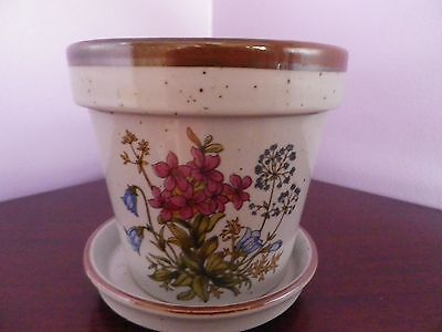 SUPERB JAPANESE WILD FLOWERS  DESIGN PLANT POT & SAUCER 10.5 cms tall in V.G.U.C