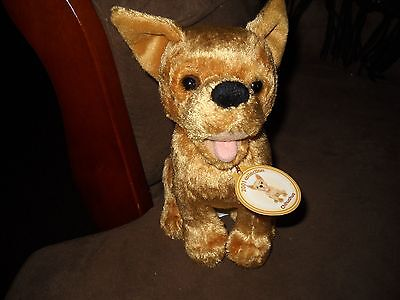 Nice 2001 Collection Chihuahua  Stuffy Dog       Gold