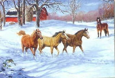 Xmas Cards Four HORSES in Snowy Pasture Holiday Cards 10 per box