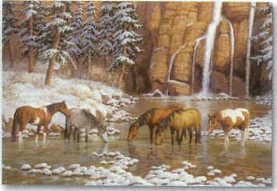 Xmas Cards HORSES Drinking Snow Scene Holiday Cards 10 per box