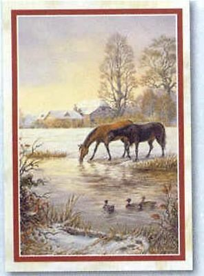 Xmas Cards Two HORSES Drinking in Stream Holiday Cards 10 per box