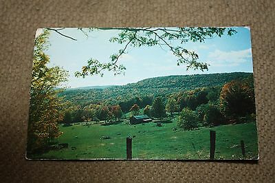 Vintage Postcard Pasture Land With Mountains In The Background