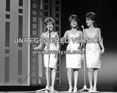 "The Ronettes 10"" x 8"" Photograph no 33"