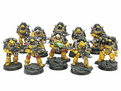 FORGEWORLD IMPERIAL FISTS TACTICAL SQUAD  -  Painted Warhammer 40K Space Marines