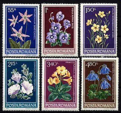1366 ROMANIA 1979 Flowers **MNH