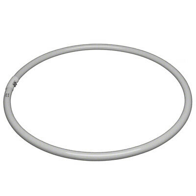 walimex Replacement Lamp for Ring Light 65W, 5400K