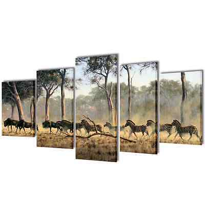 Set of 5 Zebra Canvas Prints Framed Wall Art Decor Painting 100x50cm Living Room