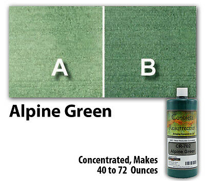 Professional Easy to Apply Water Based Concrete Stain Alpine Green 8oz Bottle