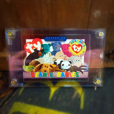 Beanie Babies Trading Card 6-25-94 release Mint in Case