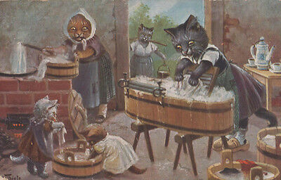 Washing Day Catland Wash Linen Clothes Laundry Antique Artist Signed Postcard