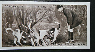 Whaddon Chase Foxhounds       Vintage 1920's Photo Card  VGC / EXC