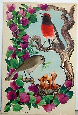 "P &o  Liner Gould  Red Capped Robin  Ships Programme ""ocean Pie"". Sept 15Th 1955"