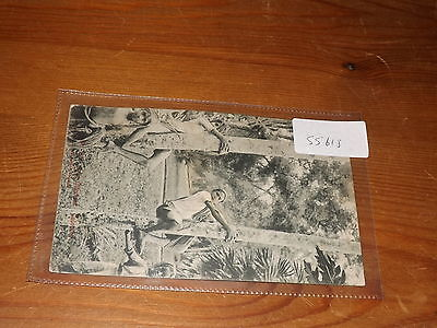 Old CEYLON  postcard our ref #55618 TREE CLIMBERS 1906