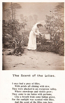 Lillies Flower Scent Song Poetry Vintage Photo Postcard