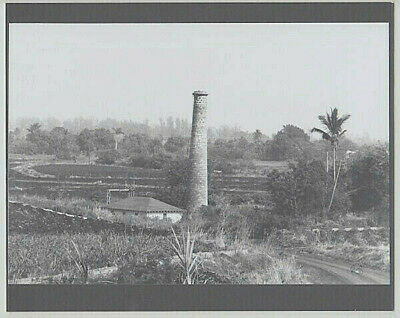 "Historic Waialua Sugar Smokestack Original Silver Halide Photo On 8X10""  Board"