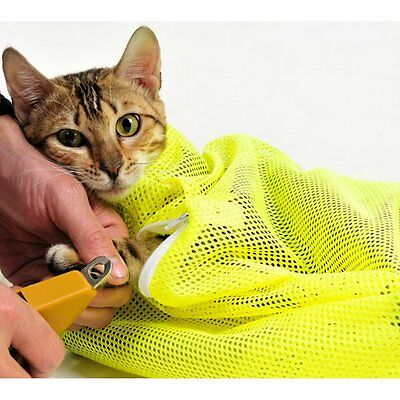 Cat Biting Restraint for Grooming Injecting Examing Eye Dropping Medicine Giving
