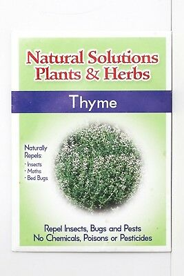 Natural Solutions Plants & Herbs Variety 10 pack of Seeds Holistic Remedies Pest