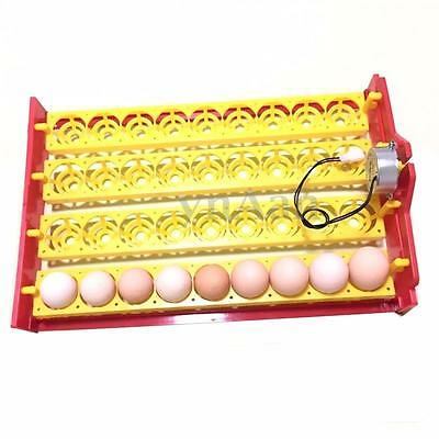 36 Chicken Eggs Turner For Automatic Duck Quail Bird Poultry Egg Incubator Tray