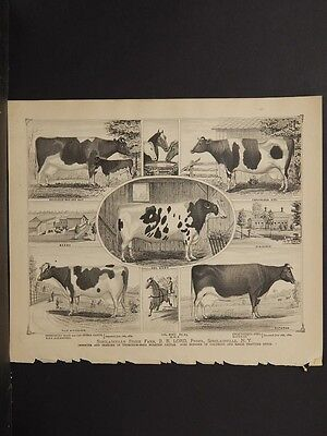 Ohio, Portage County Map, 1874, Thoroughbred Cattle Engravings, J1#55