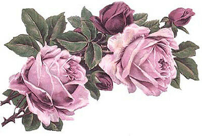 XL LoVeLy LiLaC RoSe CoRNeRs ShAbBy WaTerSLiDe DeCaLs ~FuRNiTuRe SiZe~