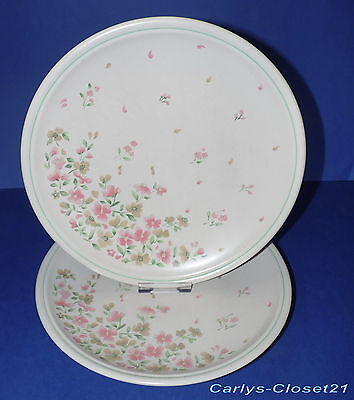 "BOOTS * 2 Country Bouquet Dinner Plates * 10"" (25.5cm) Diameter *"