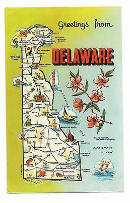 Vintage Delaware Chrome Postcard Greetings From State Map Information on Back